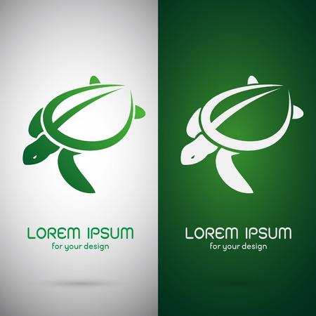 tortuga: Imagen del vector de un diseño de la tortuga en el fondo blanco y el fondo verde, símbolo Vectores
