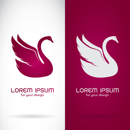 Vector image of an swan design on white background and purple background,  Symbol