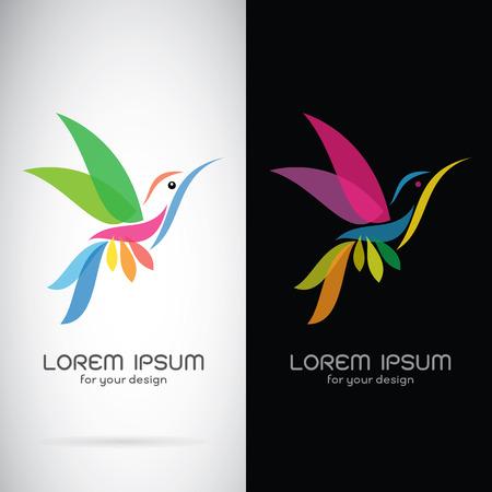 symbol: immagine vettoriale di un disegno colibrì su sfondo bianco e sfondo nero, logo, simbolo