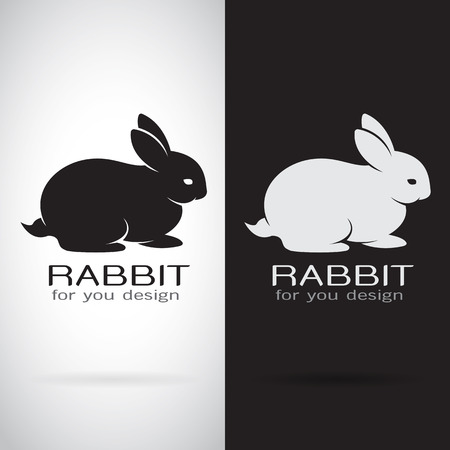 lapin silhouette: Vector image d'une conception de lapin sur fond blanc et fond noir, Logo, Symbole Illustration