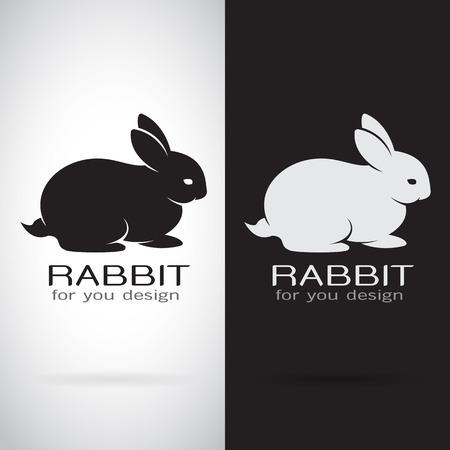 Vector image of a rabbit design on white background and black background, Logo, Symbol