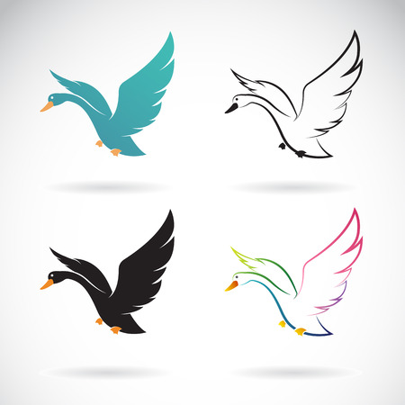 flying: Vector images of swan design on a white background.