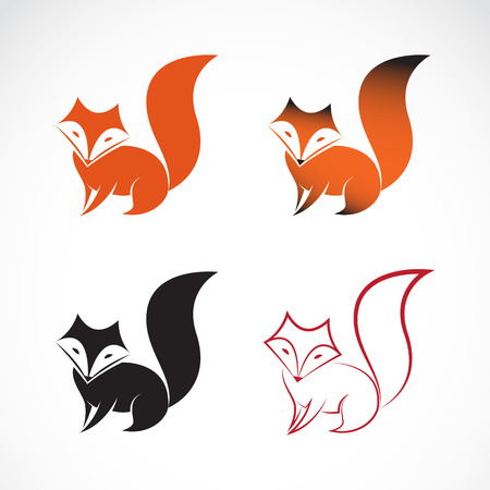 tails: Vector image of an fox design on white background