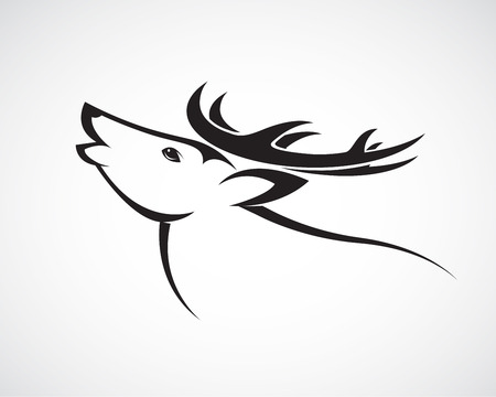 horny: Vector image of an deer head on a white background