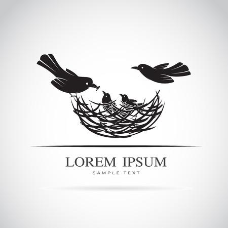 oiseau dessin: Vector image d'une famille d'oiseaux dans l'amour sur fond blanc. Illustration