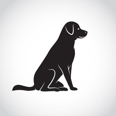 perro labrador: Vector de imagen de un perro labrador sobre fondo blanco Vectores