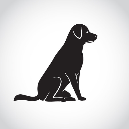 dessin noir et blanc: Vector image d'un labrador chien sur fond blanc