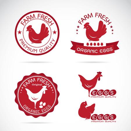 Set van vector een kip en eieren etiket op een witte achtergrond