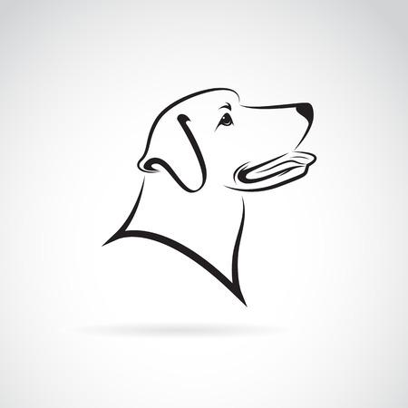白い背景の上の犬のラブラドールのベクトル画像