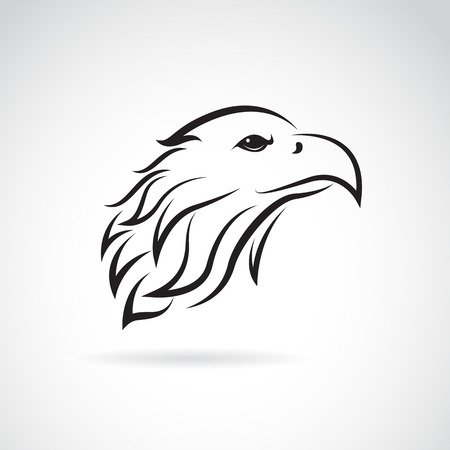 vector image: Vector image of an eagle head on white background