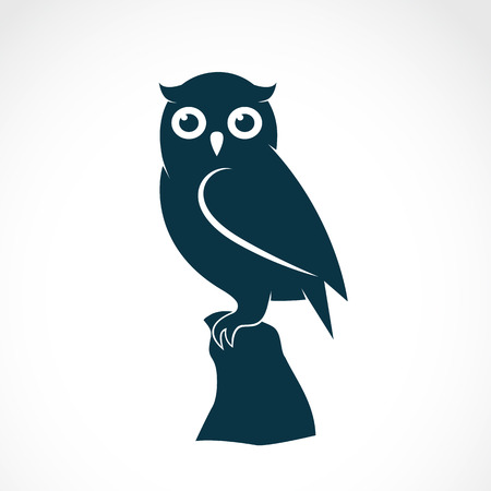 eye drawing: Vector image of an owl on white background