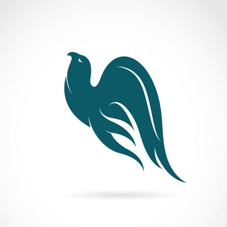 tatouage oiseau: Vector image d'un oiseau sur fond blanc Illustration