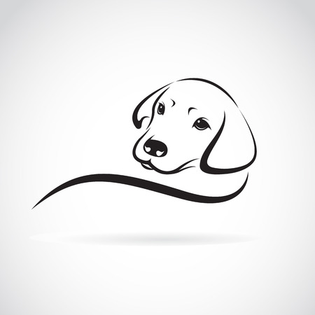 black and white line drawing: Vector image of an dog labrador on white background