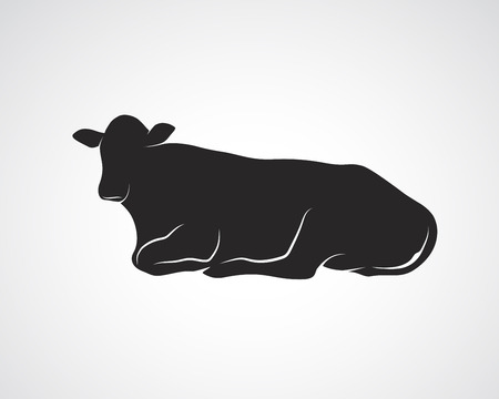 Vector image of cow on a white background.