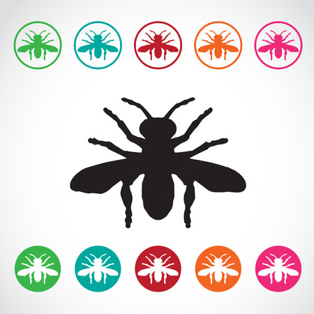 sting: Vector group of insects on white background. Bee Illustration