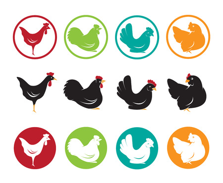 Vector image of an hen design on white background Ilustrace