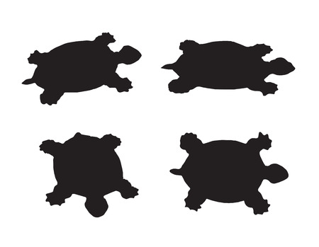 Vector group of turtle on white background Иллюстрация