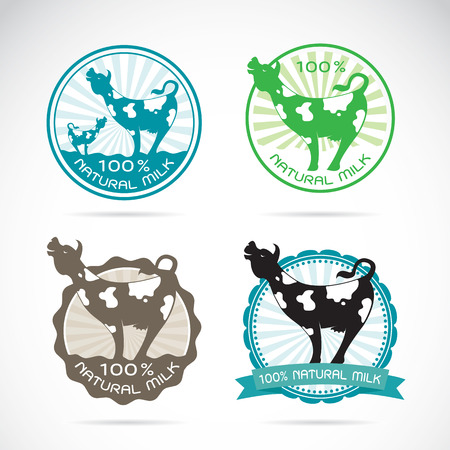 dairy cows: Set of vector an dairy cows label on white background Illustration