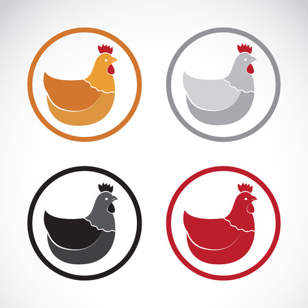 chicken and egg: Vector group of hen design on white background.