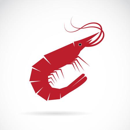saludable logo: Imagen vectorial de un diseño de camarón en el fondo blanco