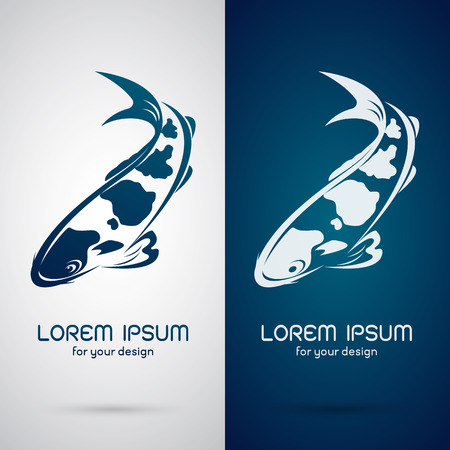 koi: Vector image of an carp koi design on white background and blue background, Logo, Symbol