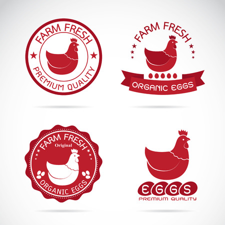 Set of vector an chicken and eggs label on white background Stock Illustratie