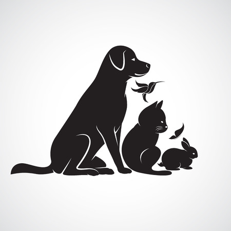 pets icon: Vector group of pets - Dog, cat, bird,butterfly, rabbit, isolated on white background