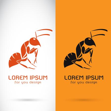 hormiga: Imagen vectorial de un diseño de hormigas en el fondo blanco y fondo naranja, logotipo, símbolo