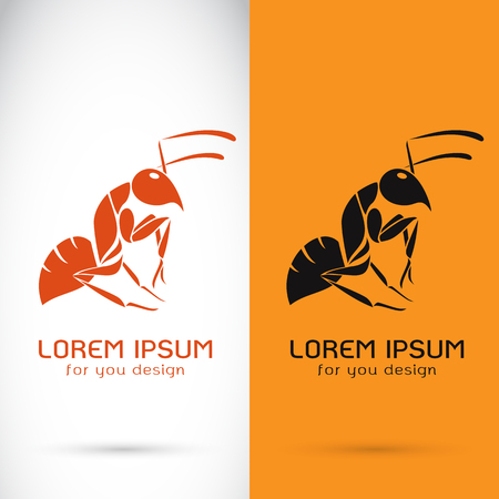 anthill: Vector image of a ant design on white background and orange background, Logo, Symbol