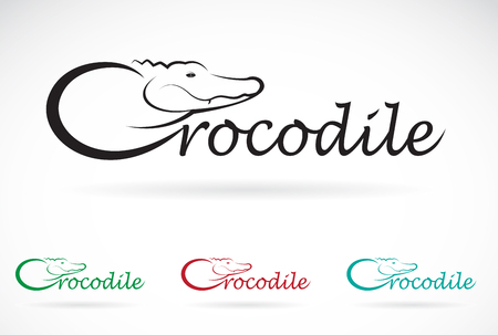alligators: Vector design crocodile is text on a white background.
