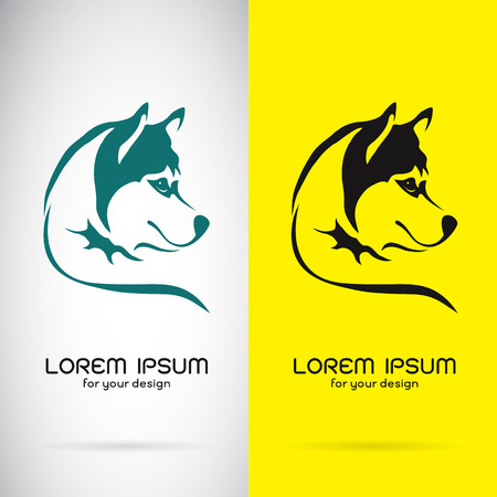 black and white wolf: Vector image of a dog siberian husky design on white background and yellow background, Logo, Symbol