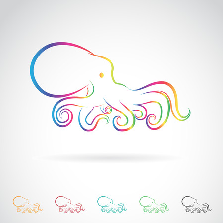 octopus: Vector image of an octopus on white background. Illustration