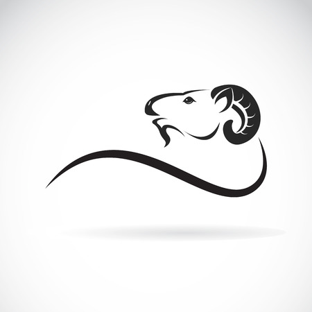 head profile: Vector image of an goat head design on white background