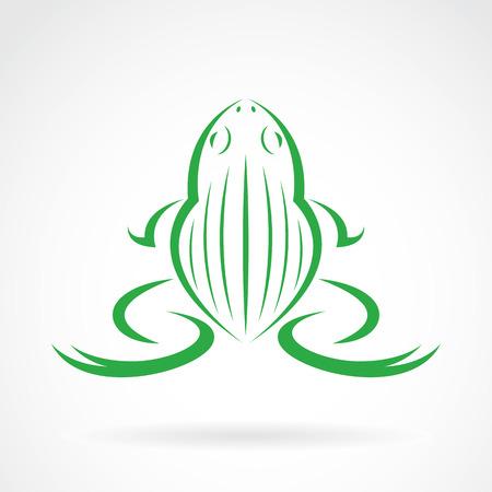 Vector image of a frog design on white background Illustration