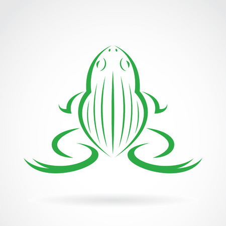 webbed legs: Vector image of a frog design on white background Illustration