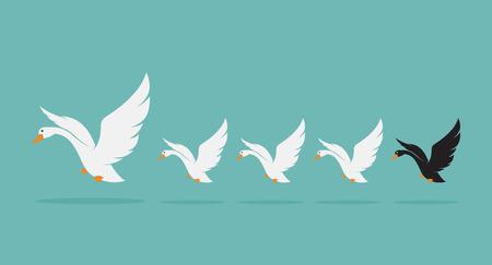 cisnes: Vector de imagen de un rebaño de cisne en el fondo azul, concepto Diferencia