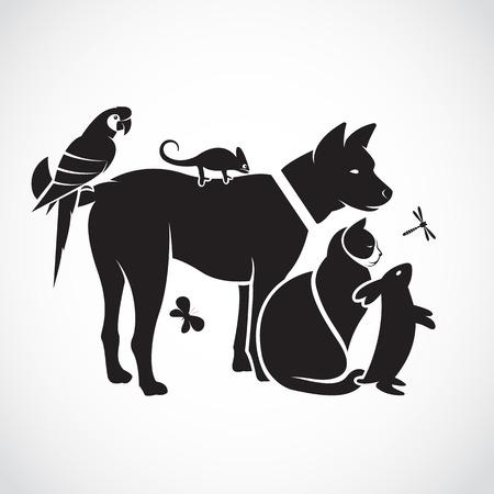 Grupo de vector de animales domésticos - perro, gato, loro, camaleón, conejo, mariposa, libélula aislados sobre fondo blanco