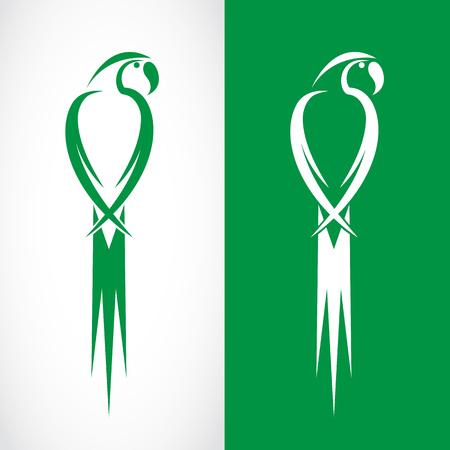 guacamaya caricatura: Imagen vectorial de un diseño loro sobre fondo blanco y el fondo verde, logotipo, símbolo Vectores