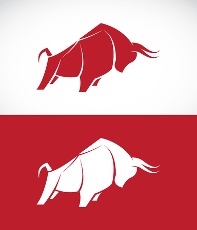 raging: Vector image of bull design on white background and red background, Logo, Symbol