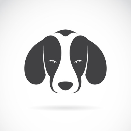 Vector image of an dog beagle on white background Illustration