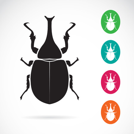 animal silhouette: Vector image of stag beetle on white background Illustration