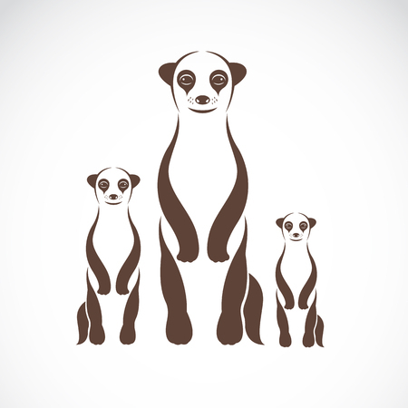 watchful: Vector image of an meerkats on white background