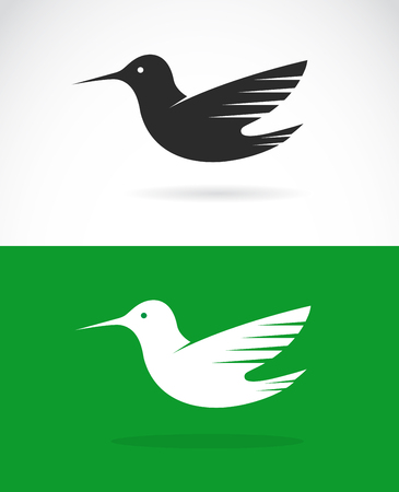 abstract animal: Vector image of an hummingbird design on green background and white background Illustration