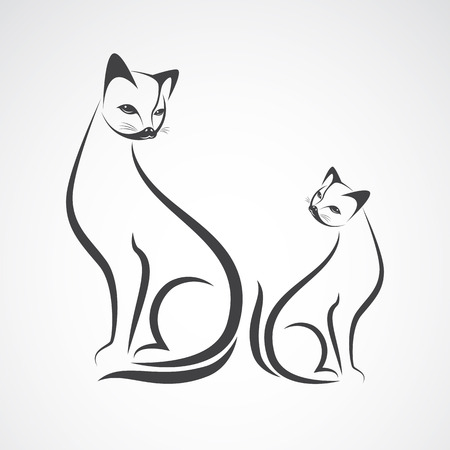 Vector image of an cat design on a white background