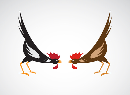 fight: Vector image of an fighting cock on white background