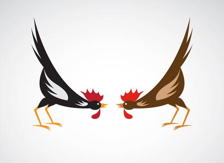 animal cock: Vector immagine di un gallo da combattimento su sfondo bianco