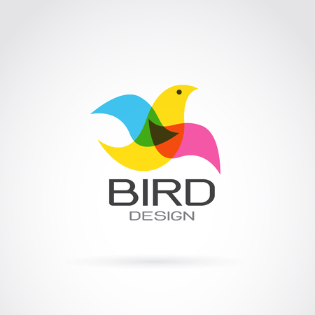 vector image: Vector image of bird design on white background.