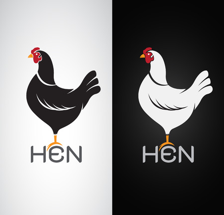 Vector image of an hen design on white background and black background