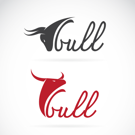 cuernos: Vector de diseño del toro es un texto sobre un fondo blanco. Vectores
