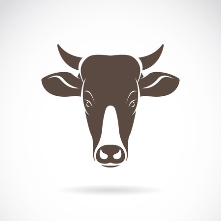 steaks: Vector image of an cow head on white background